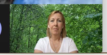 Skärmavbild på Malin Rosqvist som deltar i ett digitalt möte