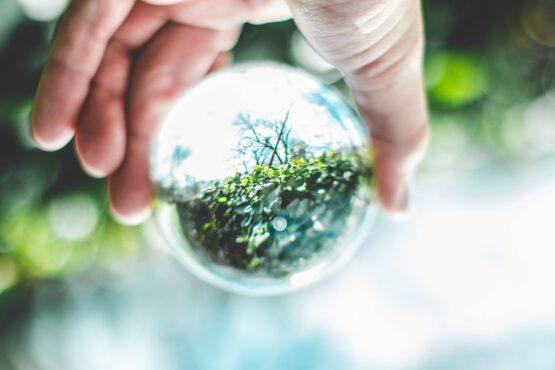 Hand håller i genomskinlig glaskula, därigenom syns kvistar och blad