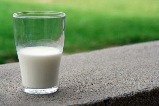 Ett glas mjölk står på en betongkant, gräsmatta i bakgrunden.